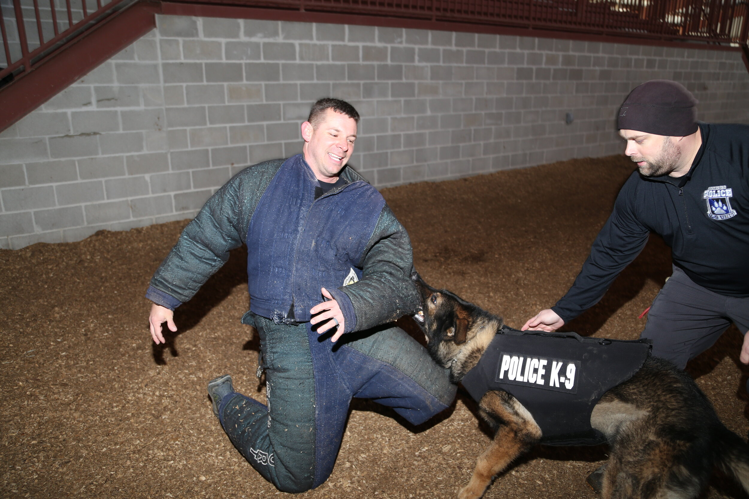 DOG TRAINING - We offer quality training programs for working dogs to meet the demands of today's military and law enforcement agencies as well as the public around Northeast Arkansas and beyond. From drug detection to obedience classes, we take pride in training each dog for success.