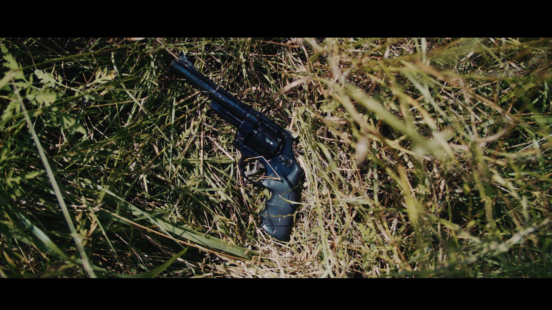 gun_1.29.1.jpg