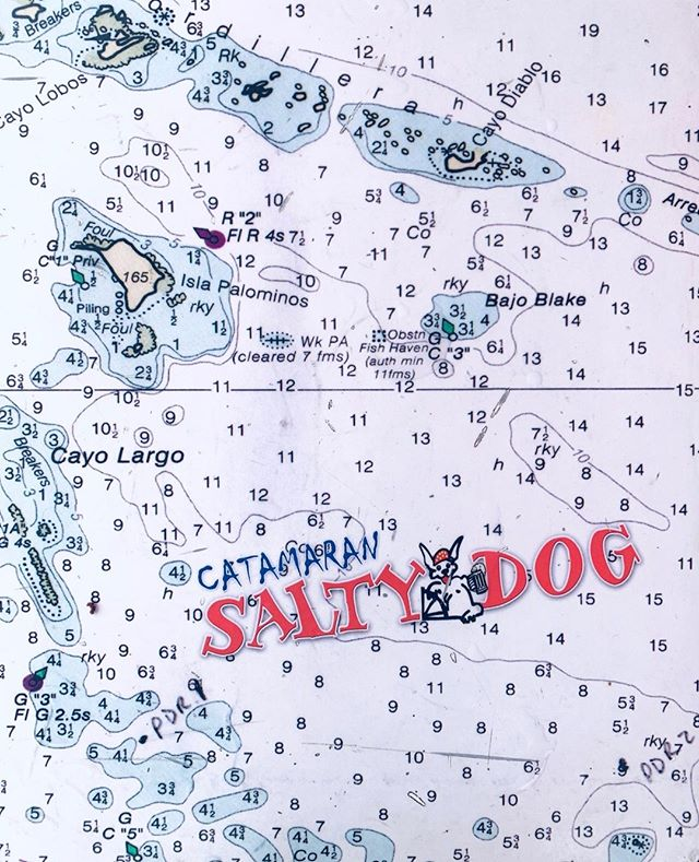 Look us up! You'll find us on the map 🙌 ⁠ #saltydogpr #saltydogcatamaran #boatlife #beachlife #islandlife #prtourism #isladelencanto #pr #catamaran #travel #snorkeling #boricua #turismo #puertorico #visitpuertorico #excursion #beachvibes #vibes #seepuertorico #visitus #booknow #beach #paradise #saltydog #fajardo #explorepuertorico #sanjuan #icacosisland #islapalomino