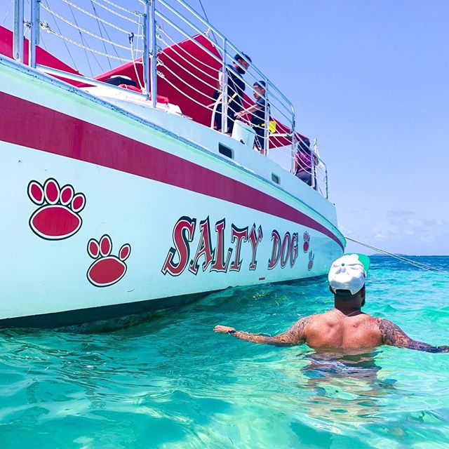 Morning views 🙌 #saltydogpr #saltydogcatamaran #boatlife #beachlife #islandlife #prtourism #isladelencanto #pr #catamaran #travel #snorkeling #boricua #turismo #puertorico #visitpuertorico #excursion #beachvibes #vibes #seepuertorico #visitus #booknow #beach #paradise #saltydog #explore #explorepuertorico #sanjuan #icacosisland #islapalomino