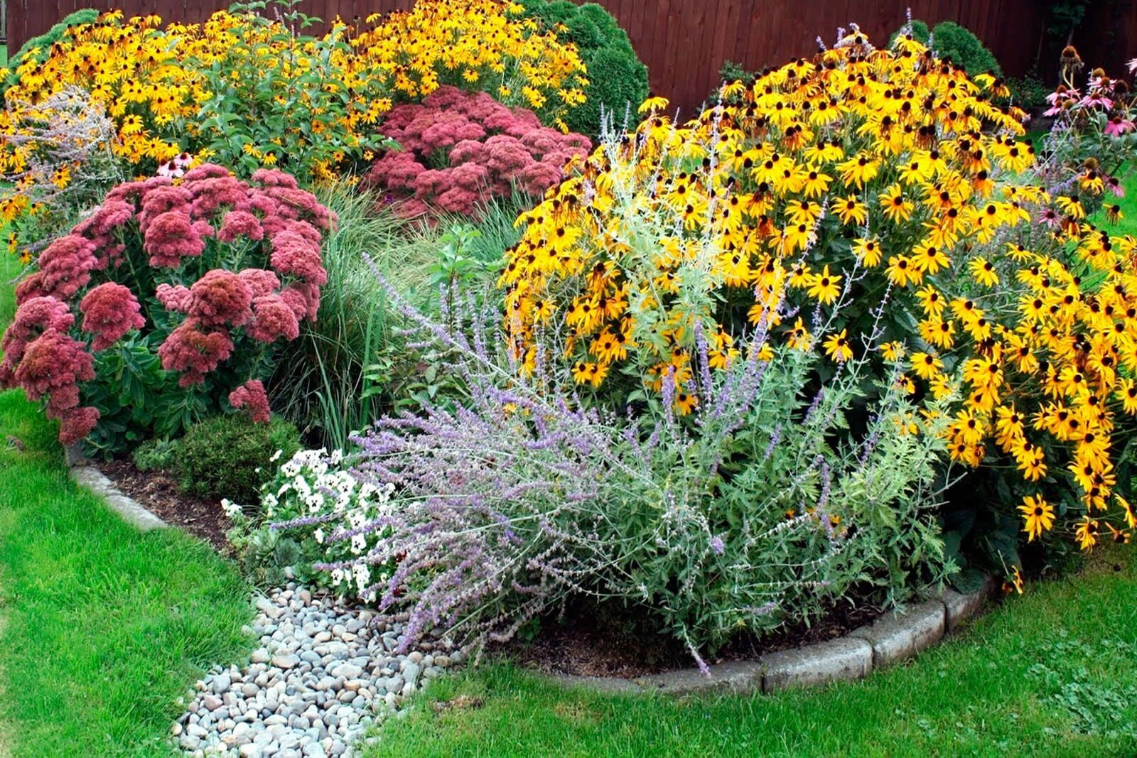 Build A Rain Garden Little Falls Watershed Alliance Water Action In Maryland And Dc