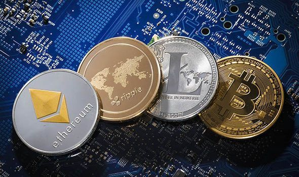 Which one Should I Hodl?