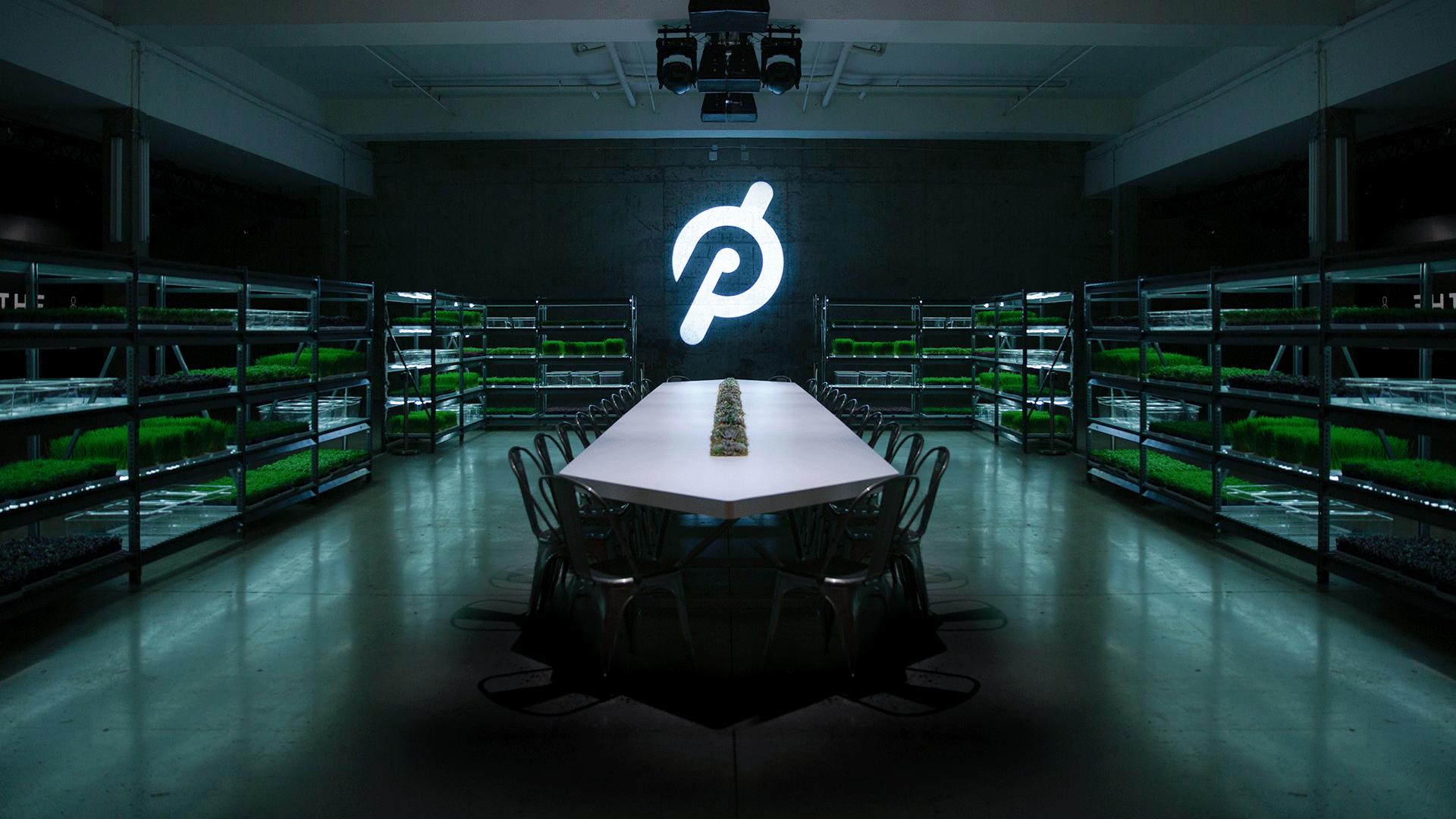 pelohc-07.png