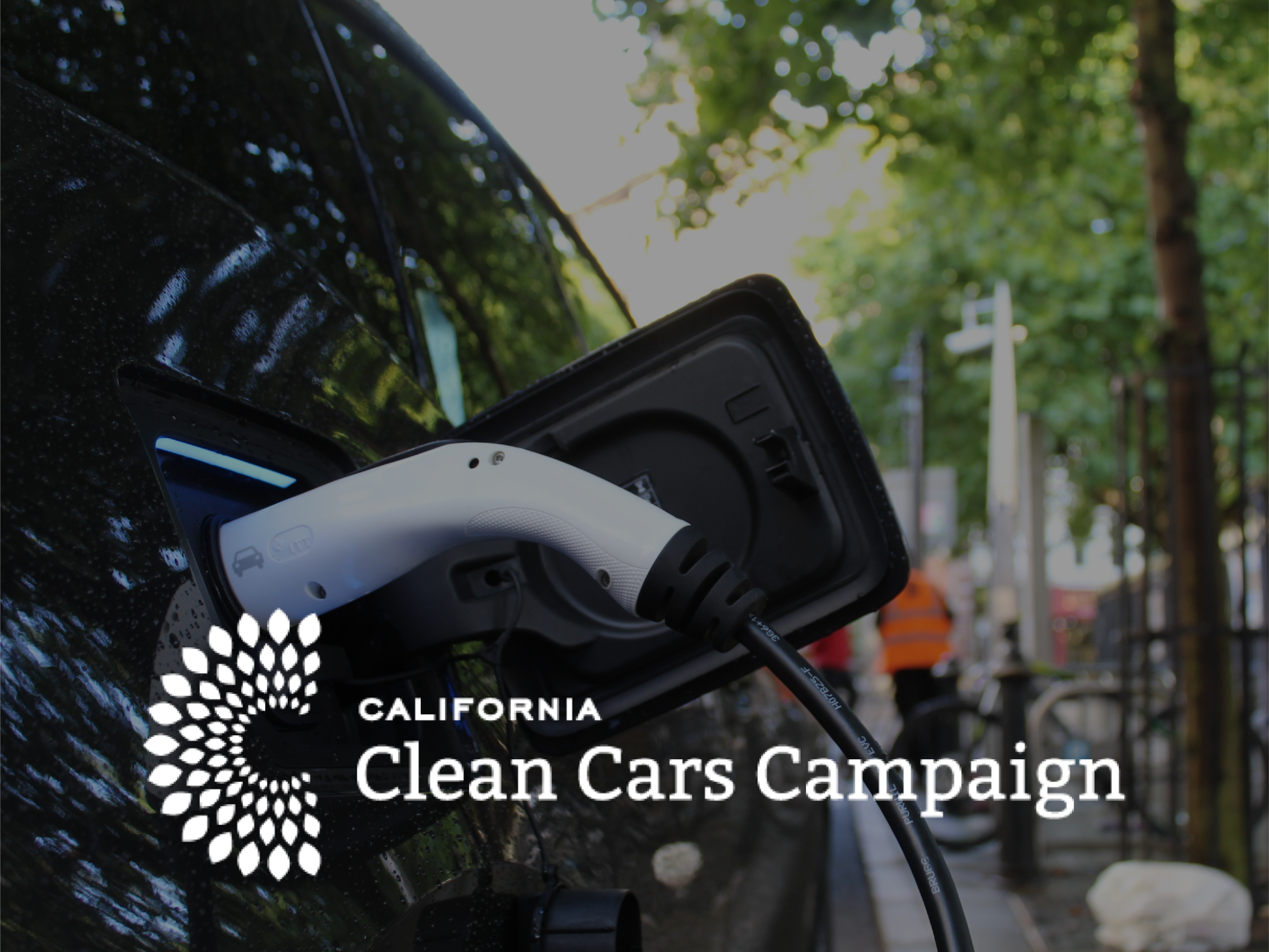 FOUNDATION - Led a multi-state campaign to defend clean car standards from Trump Administration rollbacks
