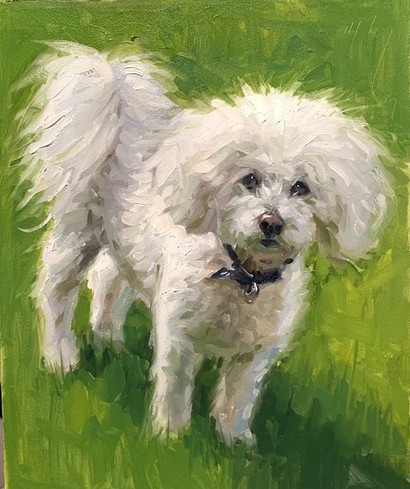 Poodle Oil Painting Pet Portrait