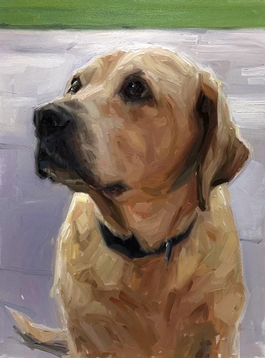 Labrador Oil Painting Pet Portrait