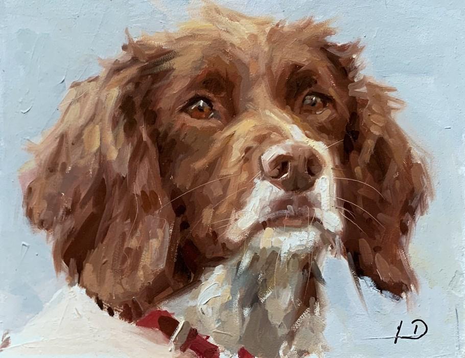 Cocker Spaniel Oil Painting Pet Portrait