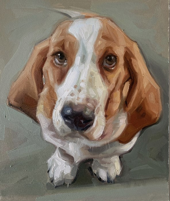 Bassett Hound Oil Painting Pet Portrait