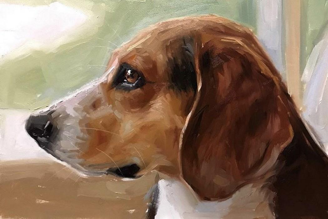Beagle Oil Painting Pet Portrait