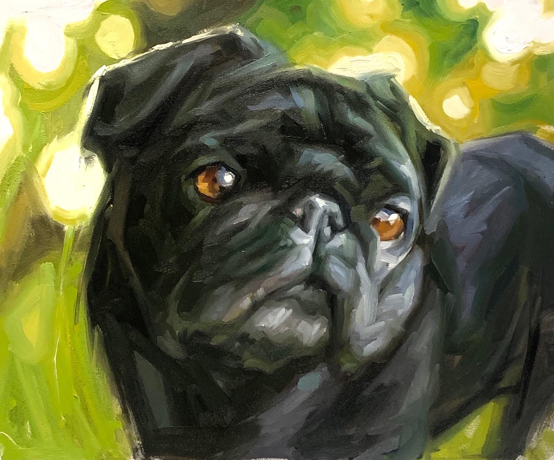 Pug Oil Painting Pet Portrait