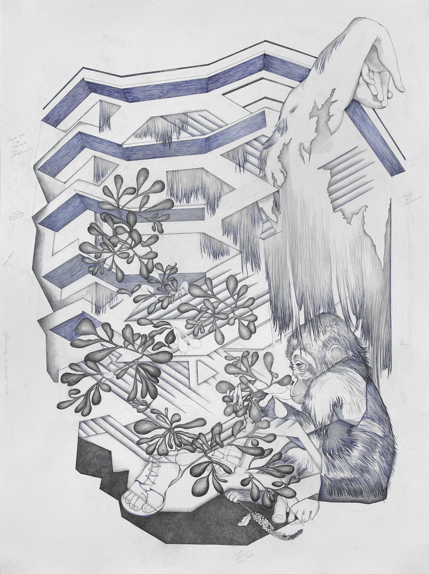 Lenape, da Verrazzano, Patrician Sandal, New Amsterdam, Vessel, Wonderment, Rue, Mutagenic Growth, Hepatic Toxicity.