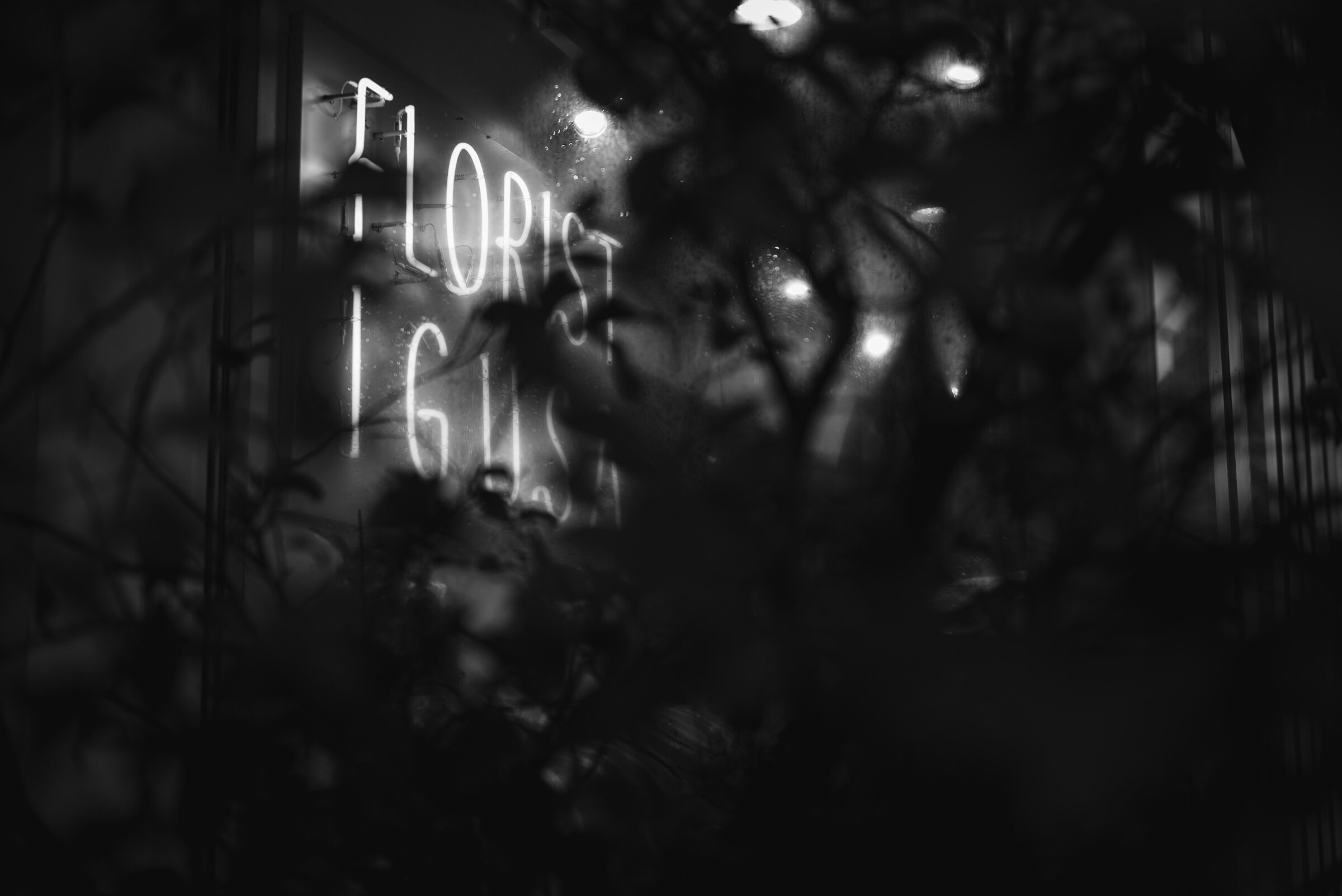 The Florist - Coming soon
