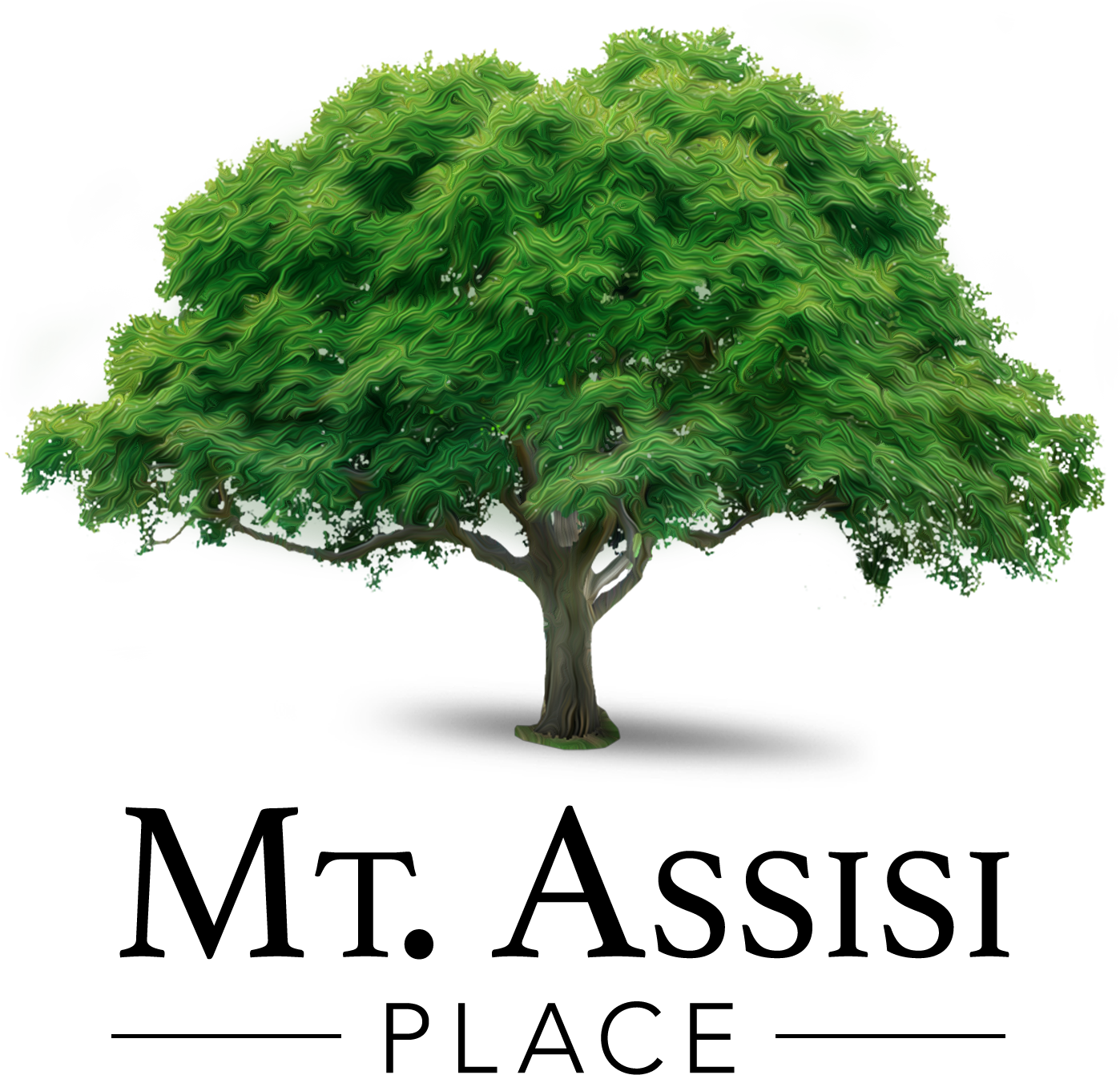 Mt. Assisi Place Tree Logo.png