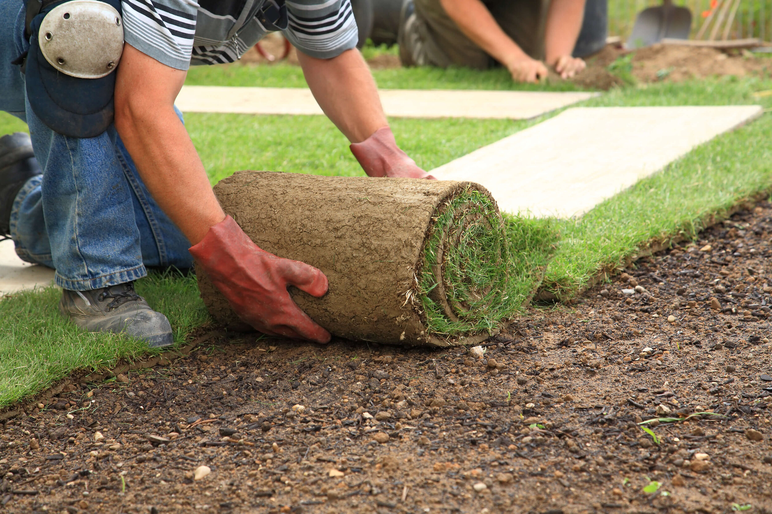 Yard Leveling Sod Installation Metairie Curb A Garden Greater
