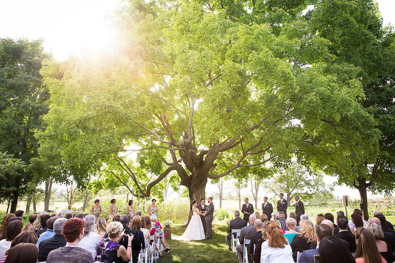 cambridge_outdoor_wedding.JPG