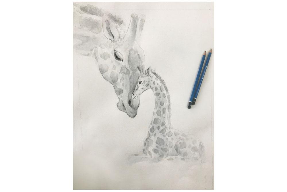 Giraffe: pencils and watercolours on watercolour paper