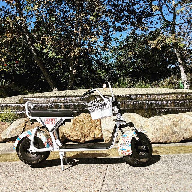 #byke_la #byke #california #santamonica #waterfall #electricbikerental #electricbike #love
