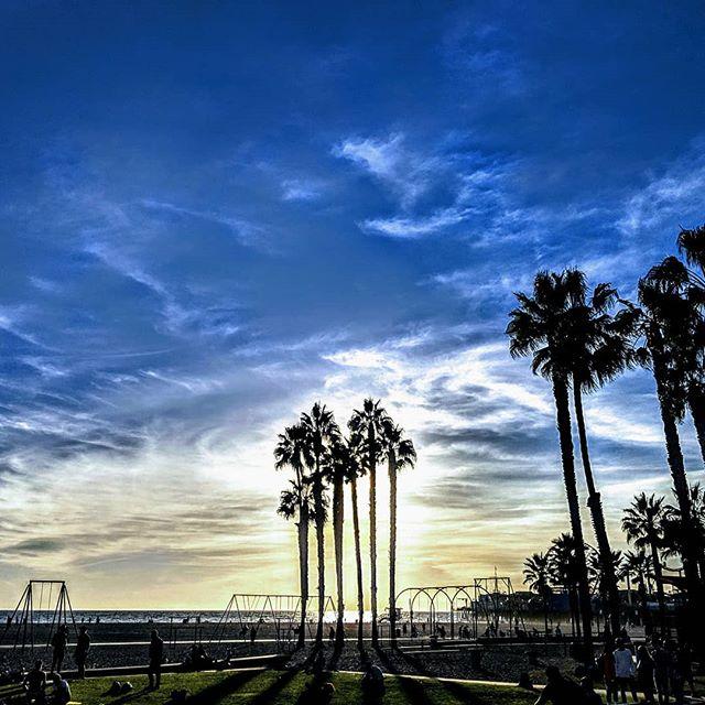 Come by Santa Monica and take in breath taking views!! #byke #byke_la #california #santamonica #trees #nature #electricbike #electricscooter #beach #ride #photography #keepitclean #boss #losangeles #art #bluesky #sky