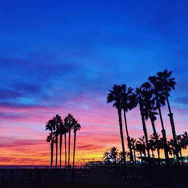 Come by Santa Monica and take in breath taking views!! #byke #byke_la #california #santamonica #trees #nature #electricbike #electricscooter #beach #ride #photography #keepitclean #boss #losangeles #art #bluesky #sky #sunset