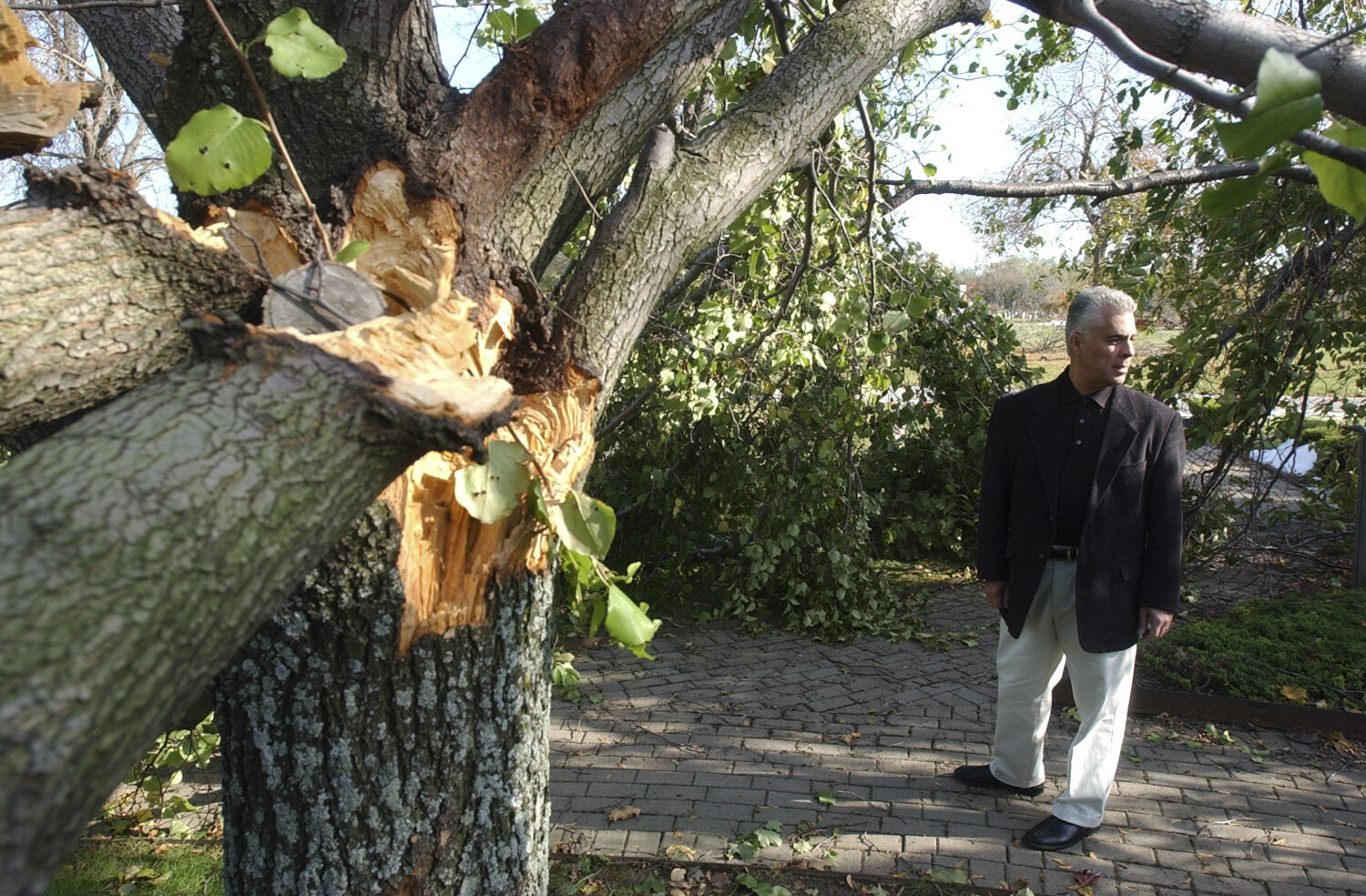 Director of Diocesan Cemeteries, Carmen Colao, inspects the damage at Holy Cross Cemetery in Lackawanna. A violent storm moved through the area on Oct. 13, 2006 damaging trees and leaving hundreds with out power throughout Western New York.