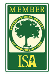 Maguire-tree-care-TCIA-Member