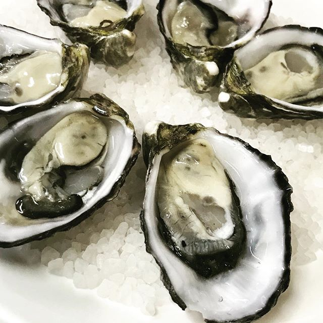 How about some beautiful coffin bay oysters from SA? Available for lunch or dinner 3 ways. Natural, shallot vinegar or kilpatick see you soon #oysters #lunch #dinner #yum #seafood #fresh