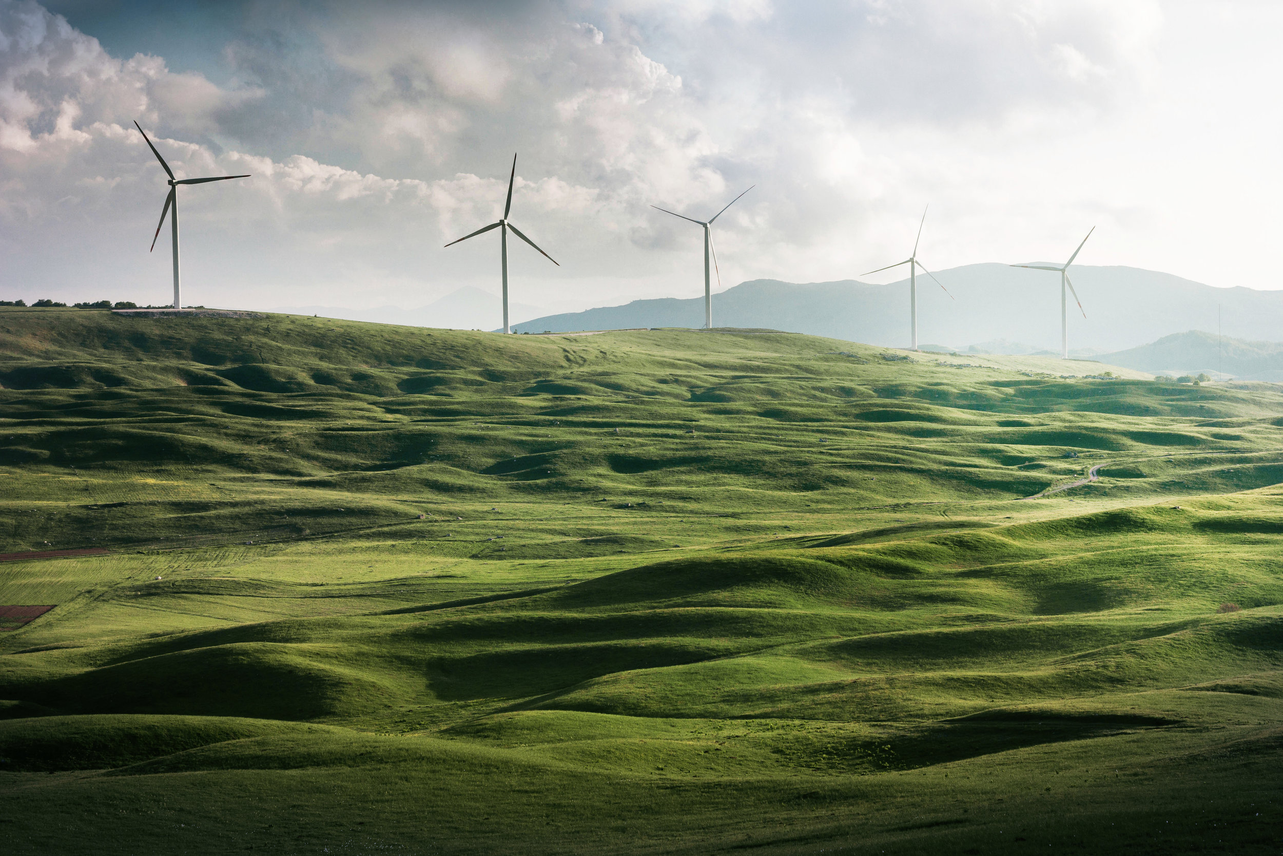 Energy Transition: 10 Insights for the Summer