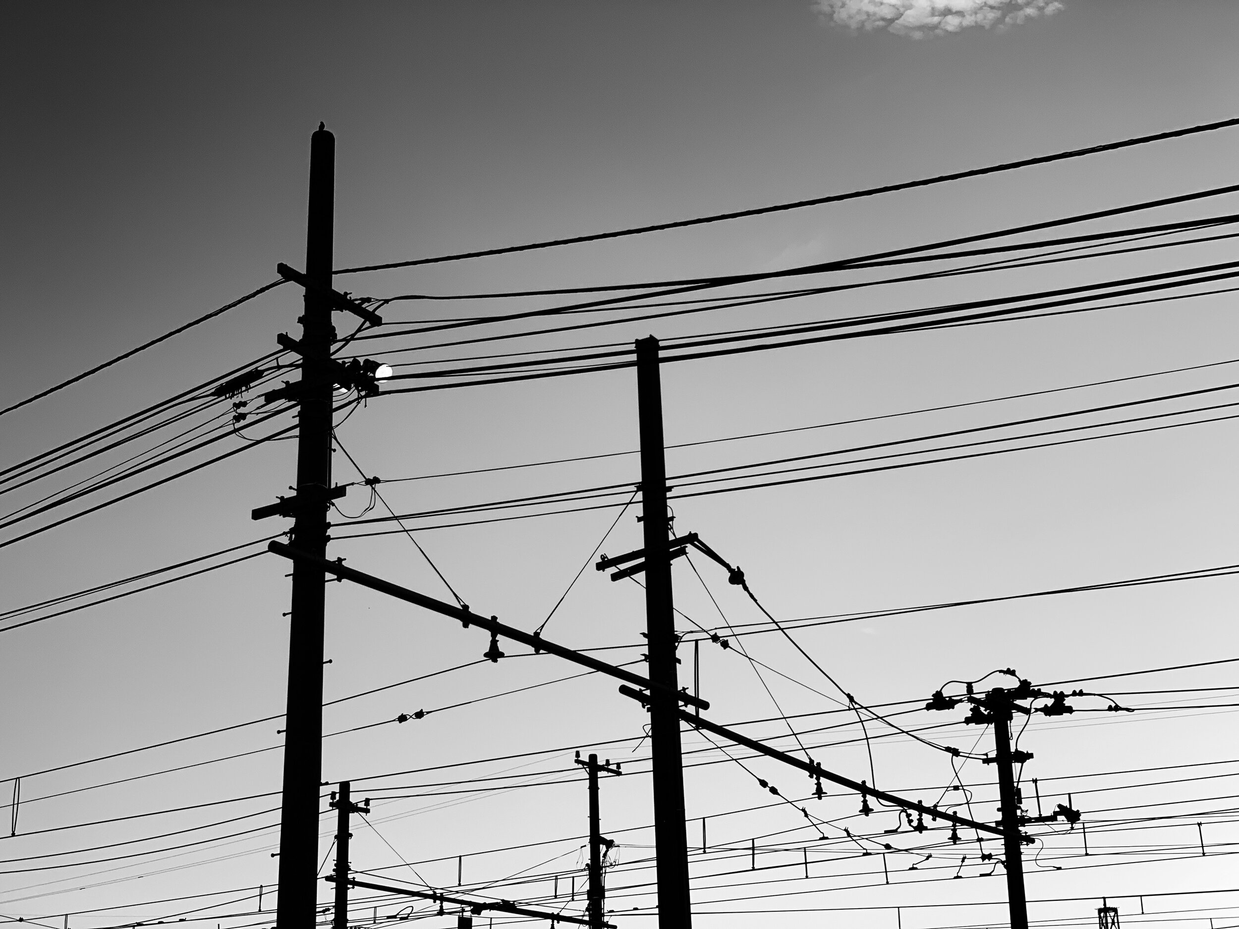 electrical wires in black and white