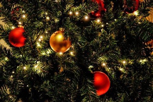 celebration-christmas-christmas-balls-364668 (2).jpg