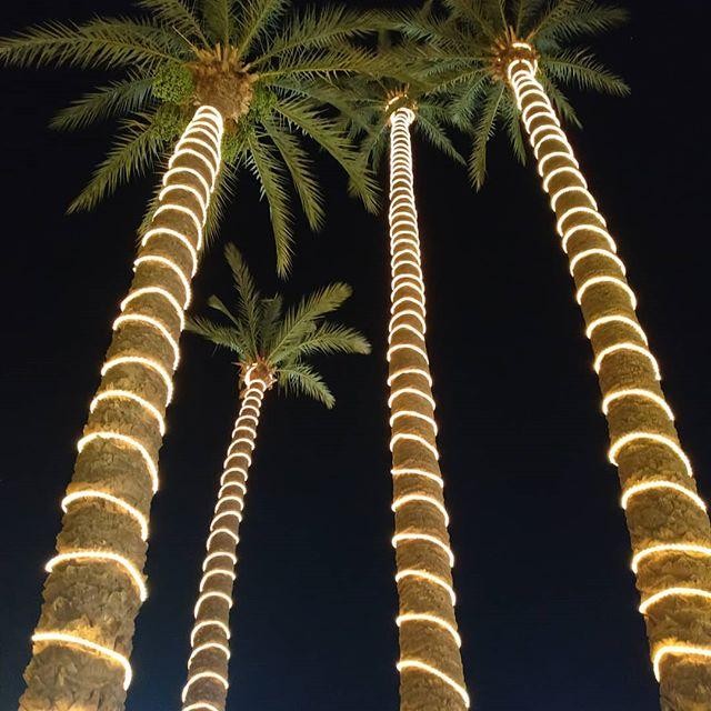 #magicalpalms #magicalmarrakech #summernights