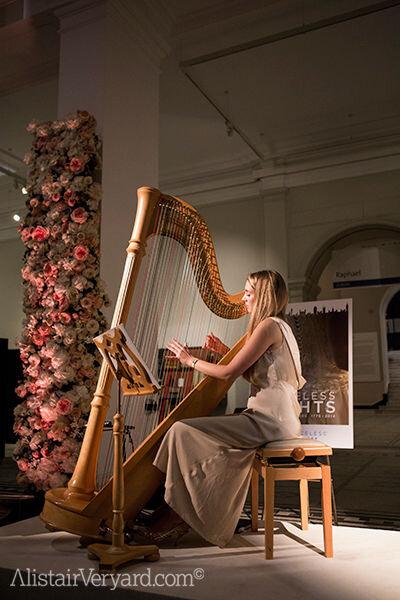 Beautiful Harp.jpg