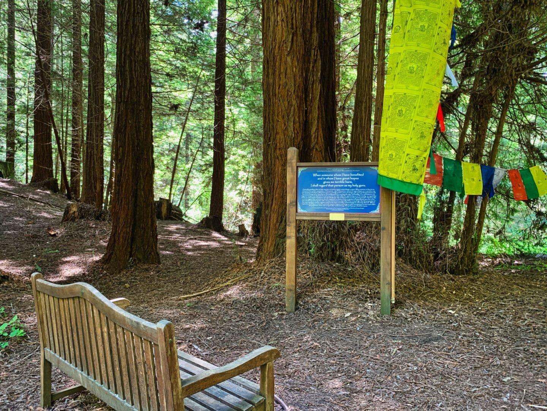 land-of-medicine-buddha-trail-sign-1440x1080.jpg