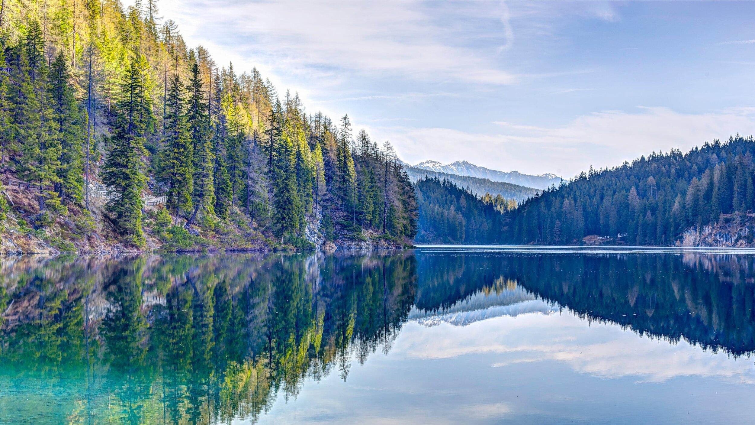 forest+lake+1.jpg