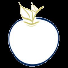 apple trspt.png