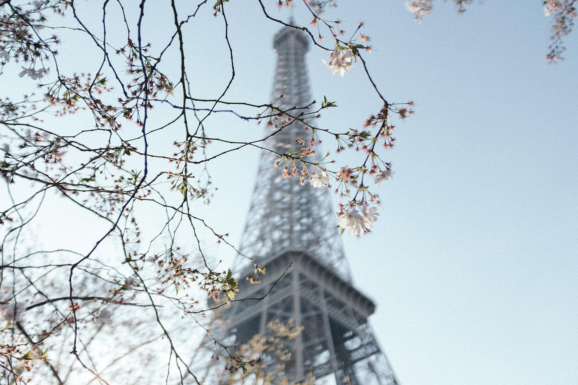 Travel Guides Paris In Four Months