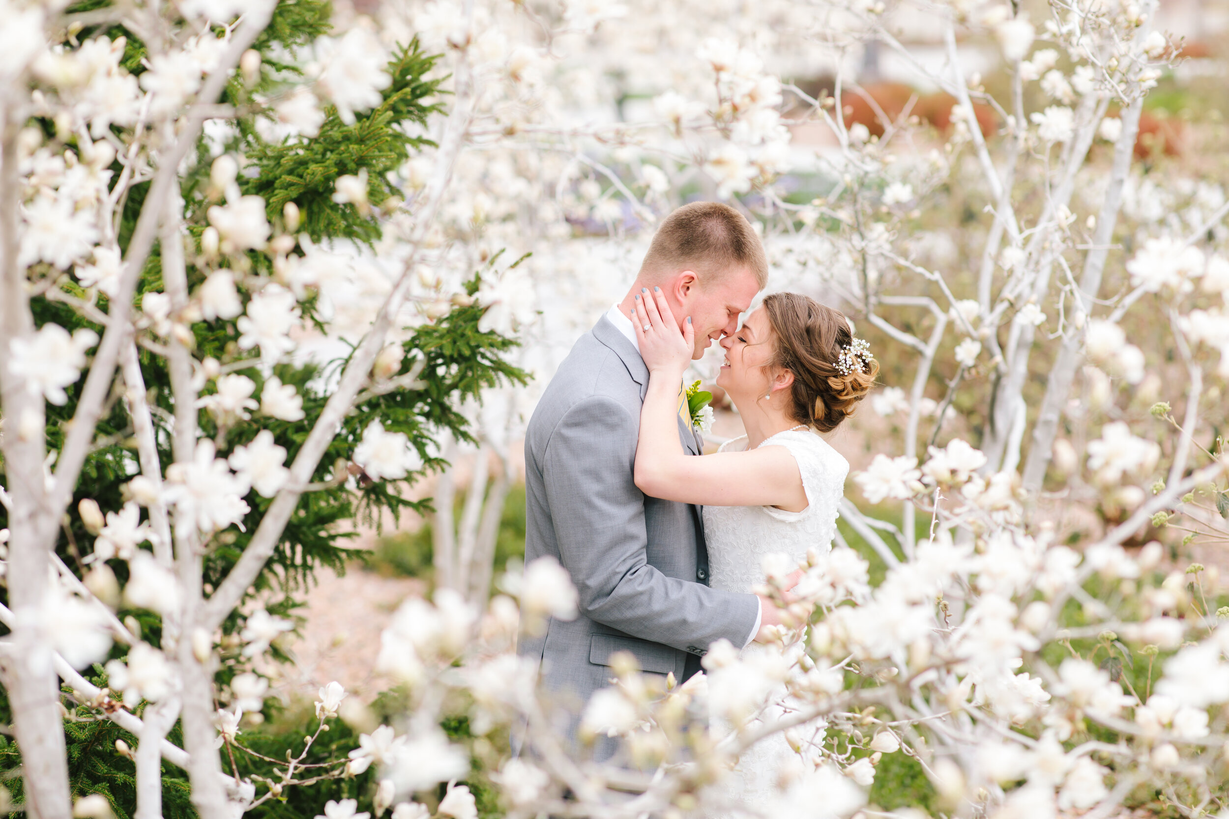 unique wedding picture inspiration cherry tree blossom picture through the trees couple goals white cherry blossoms happy couple flowers in the hair wedding hairstyle inspiration families are forever lds couple beautiful couple payson temple wedding wedding goals #eternalbuddies #weddingsession #weddinginspo #ldswedding #ldsbride #couplegoals #paysontemple #temple #profressionalphotographer #utah #love