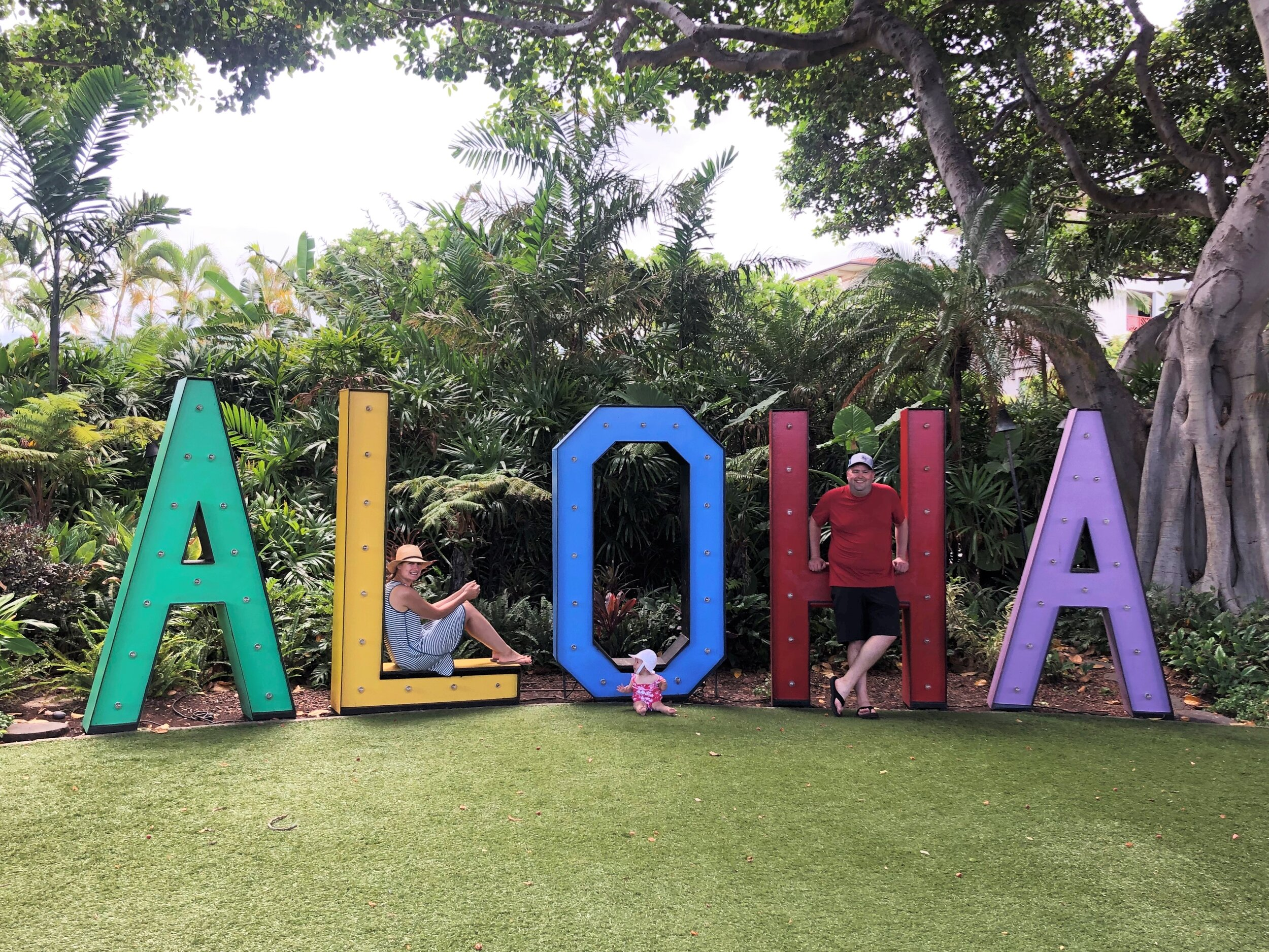 Maui (1).JPEG