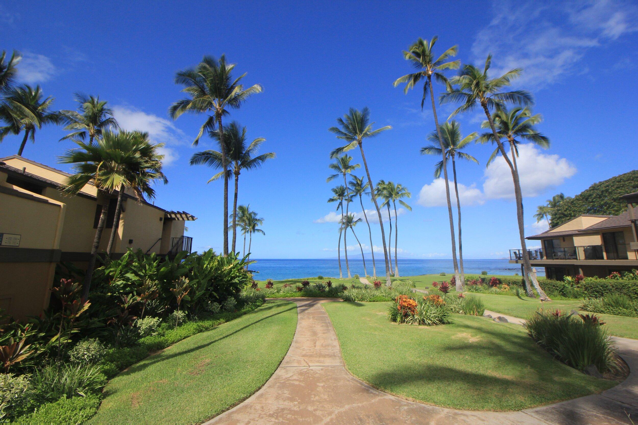 Maui (4).JPG