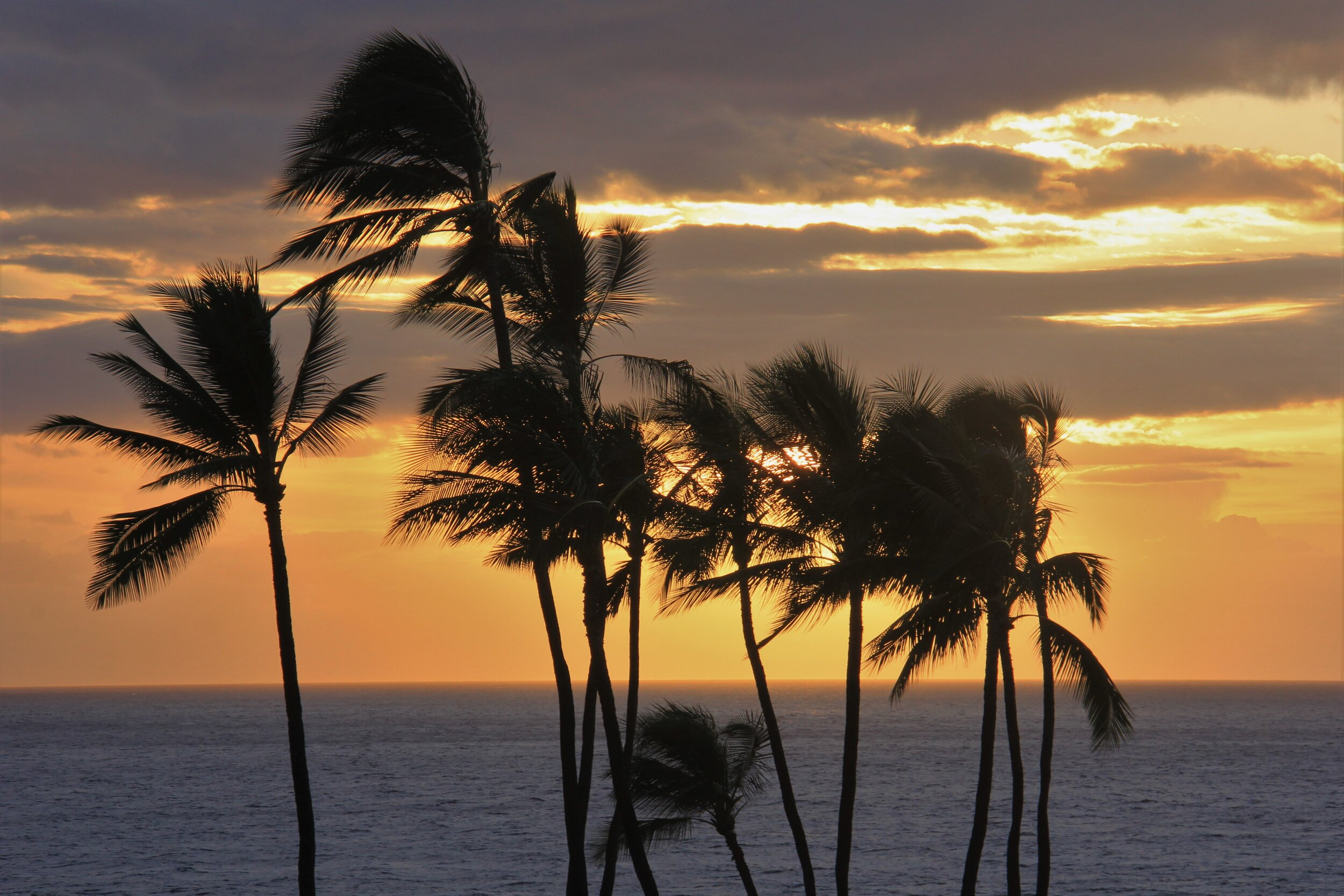 Maui Sunset.jpeg