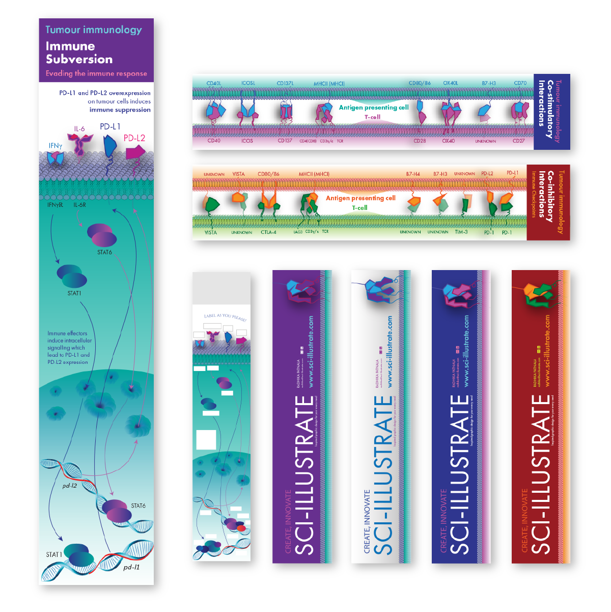 The Tumour Immunology Series -
