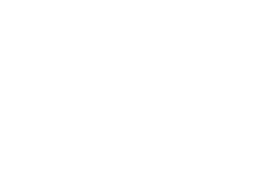 PDN 18-39 New Logo for Foundation-06.png
