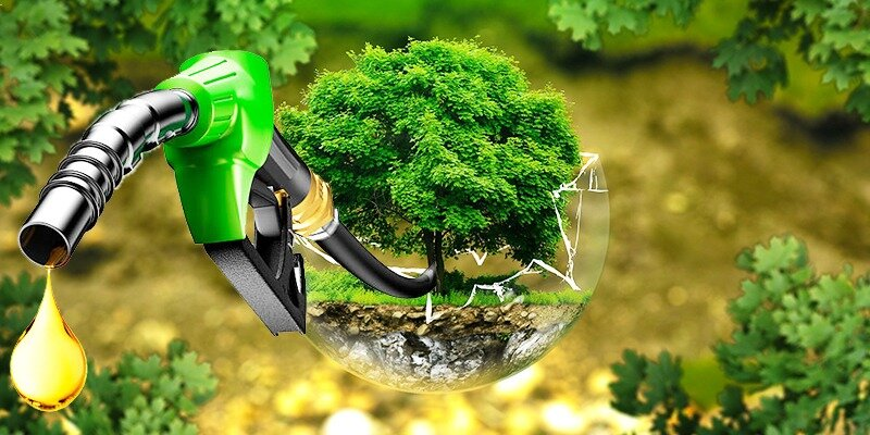 biodiesel-diario-petrolero.jpg