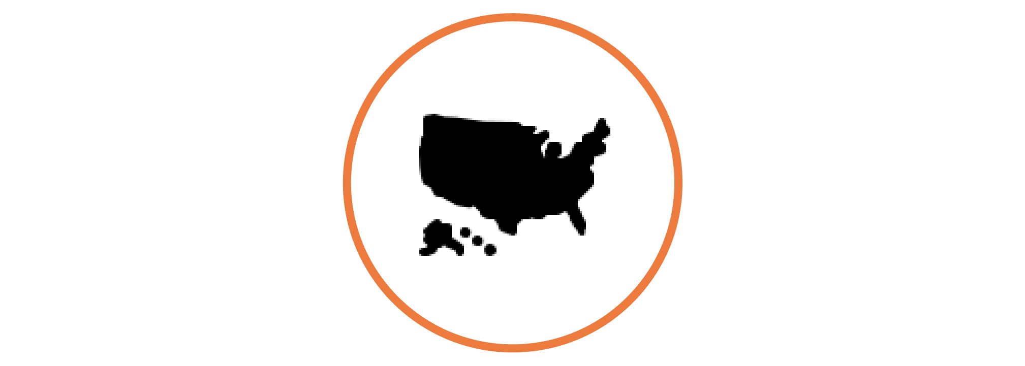 icon of the united states