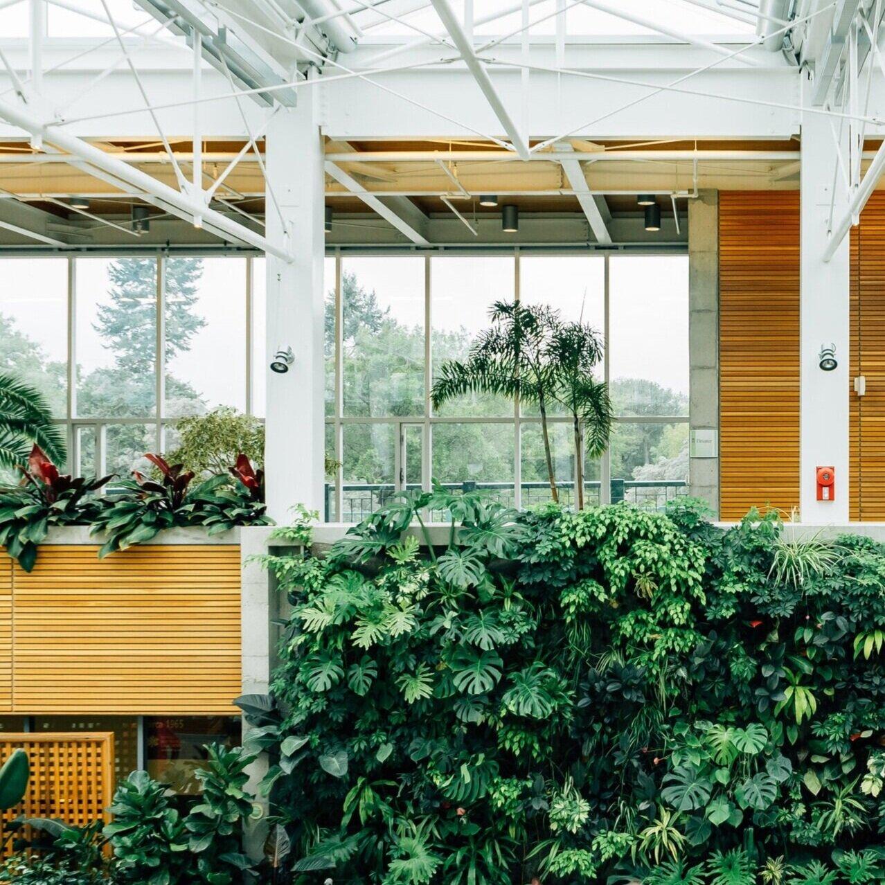 Plants Wherever You Work Plantclub Io