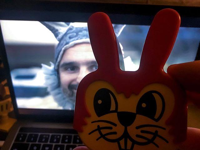 Bunnies everywhere 🐰🐰 . . . . . #strokesurvivor #strokerecovery #documentary #mentalhealthawareness #stokenewington #musicfestival #aphasia #algarve #bunny #bunnysuit @filipefale @david_davey_dave_higgs @markusrobertschroder
