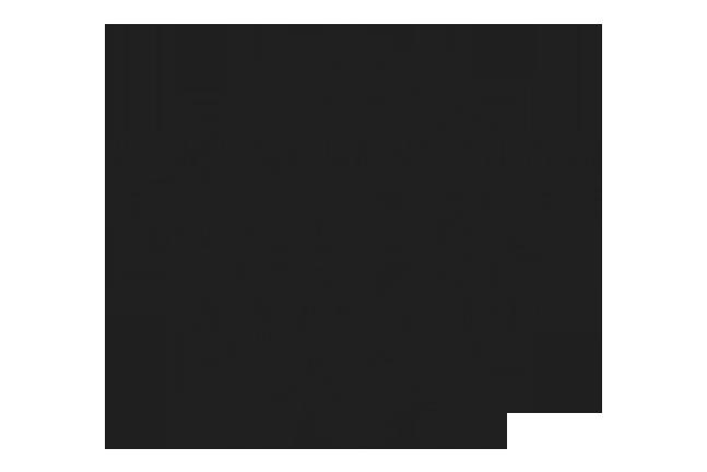 LancSoap.png