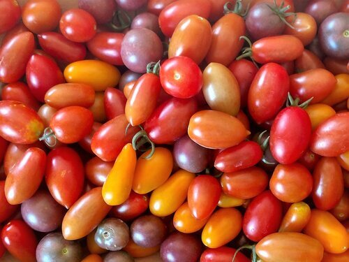 Assortment of cherry and grape tomatoes.