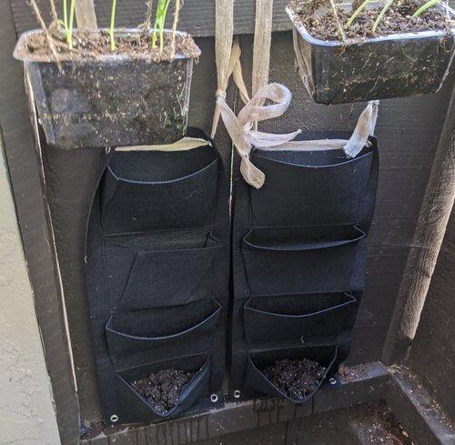 hanging grow bags