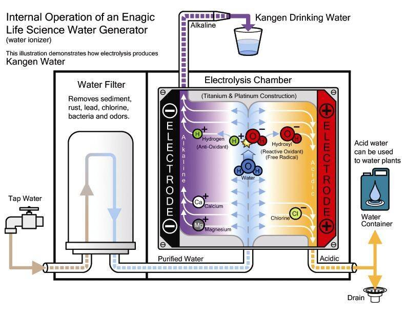 What Is Kangen Water Life By Design Movement