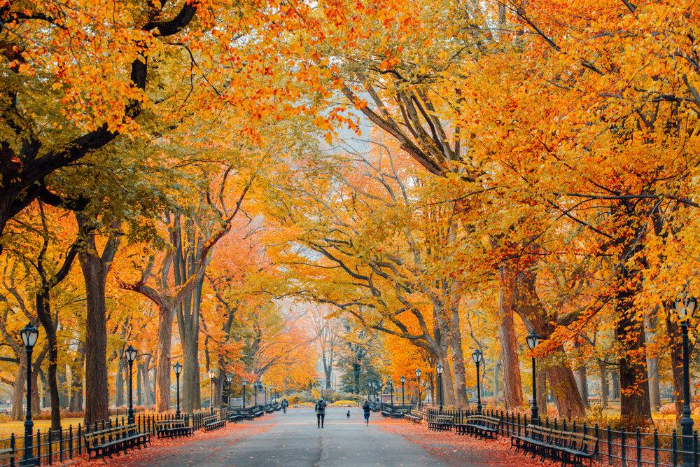 Photo Credit: Beaconhotel.com